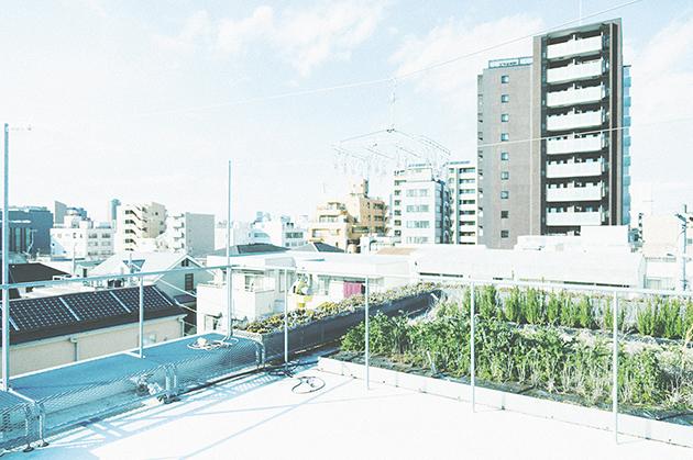 MG_TaichiKuma02