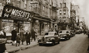 moscot_sign3